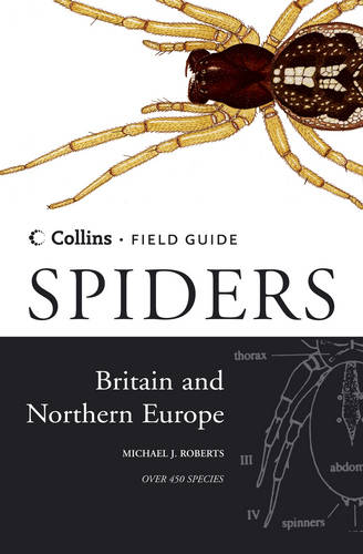 Spiders of Britain and Northern Europe - Collins Field Guide (Hardback)