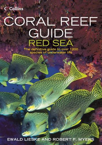 Coral Reef Guide Red Sea: Red Sea to Gulf of Aden, South Oman (Paperback)