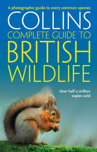 Collins Complete Guide - British Wildlife: A Photographic Guide to Every Common Species - Collins Complete Guide (Paperback)