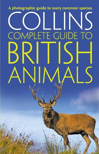 Collins Complete British Animals: A Photographic Guide to Every Common Species - Collins Complete Guides (Paperback)