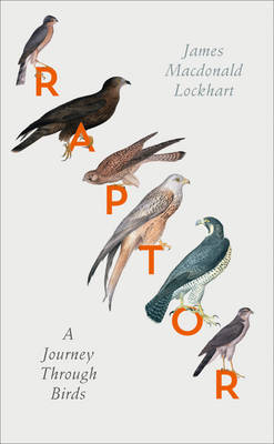 Raptor: A Journey Through Birds (Hardback)