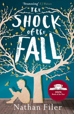 The Shock of the Fall (Paperback)
