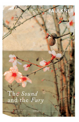 The Sound and the Fury (Paperback)
