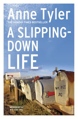 A Slipping Down Life (Paperback)
