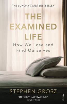 The Examined Life: How We Lose and Find Ourselves (Paperback)