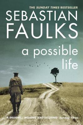 A Possible Life (Paperback)