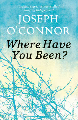 Where Have You Been? (Paperback)