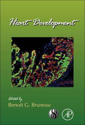Heart Development - Current Topics in Developmental Biology 100 (Hardback)