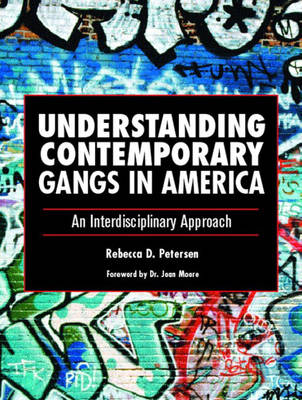 Understanding Contemporary Gangs in America: An Interdisciplinary Approach (Paperback)