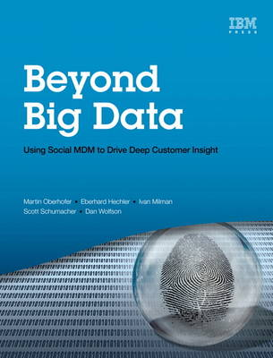 Beyond Big Data: Using Social MDM to Drive Deep Customer Insight (Paperback)