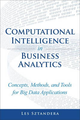 Computational Intelligence in Business Analytics: Concepts, Methods, and Tools for Big Data Applications (Hardback)