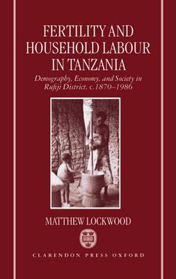 Fertility and Household Labour in Tanzania: Demography, Economy and Society in Rufiji District, c.1870-1986 (Hardback)