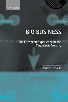 Big Business: The European Experience in the Twentieth Century (Paperback)