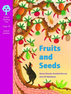 Oxford Reading Tree: Levels 10-11: Cross-curricular Jackdaws: Pack (6 Books, 1 of Each Title) (Multiple copy pack)