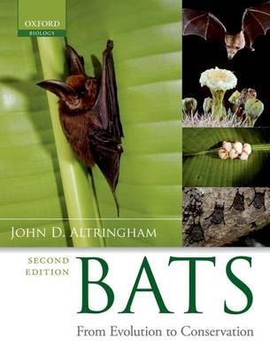Bats: From Evolution to Conservation (Paperback)
