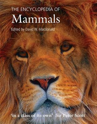The Encyclopedia of Mammals (Paperback)