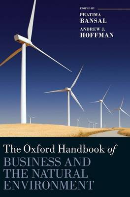 The Oxford Handbook of Business and the Natural Environment - Oxford Handbooks in Business and Management C (Hardback)