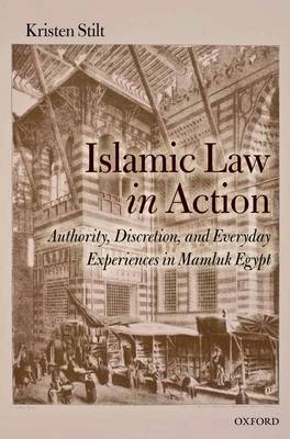 Islamic Law in Action: Authority, Discretion, and Everyday Experiences in Mamluk Egypt (Hardback)