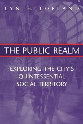 The Public Realm: Exploring the City's Quintessential Social Territory (Paperback)