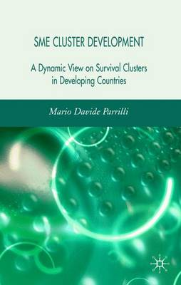 SME Cluster Development: A Dynamic View of Survival Clusters in Developing Countries (Hardback)