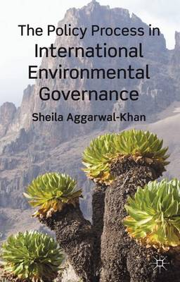 The Policy Process in International Environmental Governance (Hardback)