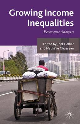 Growing Income Inequalities: Economic Analyses (Hardback)