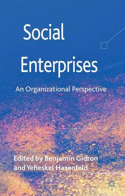 Social Enterprises: An Organizational Perspective (Hardback)