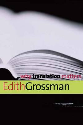 Why Translation Matters - Why X Matters Series (Paperback)