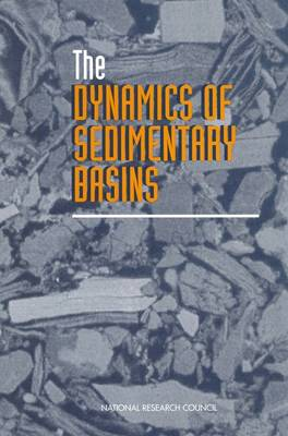 The Dynamics of Sedimentary Basins (Paperback)