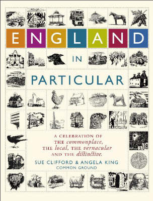 England in Particular: A Celebration of the Commonplace, the Local, the Vernacular and the Distinctive (Hardback)