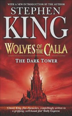 The Dark Tower: Wolves of the Calla v. 5 (Paperback)