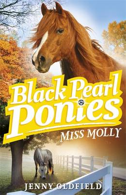 Miss Molly - Black Pearl Ponies Book 3 (Paperback)