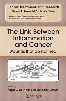 The Link Between Inflammation and Cancer: Wounds That Do Not Heal - Cancer Treatment and Research v. 130 (Hardback)
