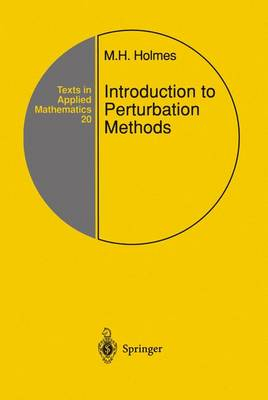 Introduction to Perturbation Methods: v. 20 - Texts in Applied Mathematics v. 20 (Hardback)