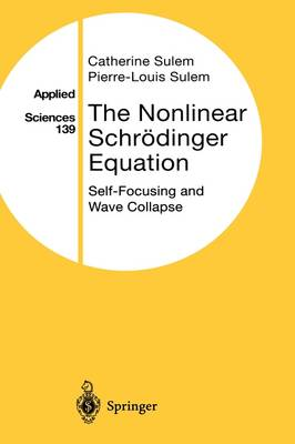 The Nonlinear Schreodinger Equation: Self-Focusing and Wave Collapse - Applied Mathematical Sciences 139 (Hardback)