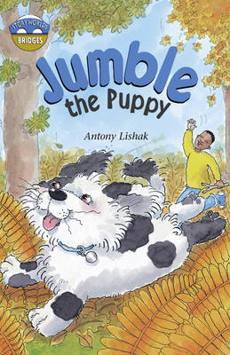 Storyworlds Bridges Stage 12 Jumble the Puppy (Single): ' - Storyworlds (Paperback)