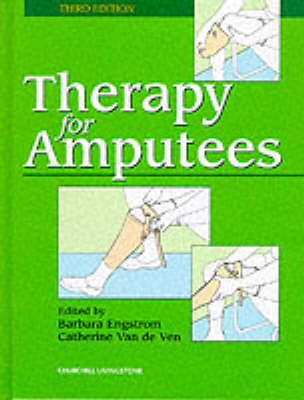 Therapy for Amputees (Hardback)