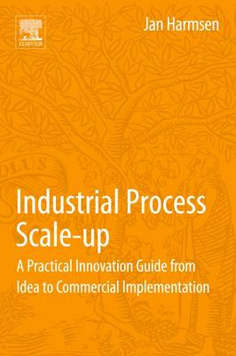 Industrial Process Scale-Up: A Practical Innovation Guide from Idea to Commercial Implementation (Paperback)