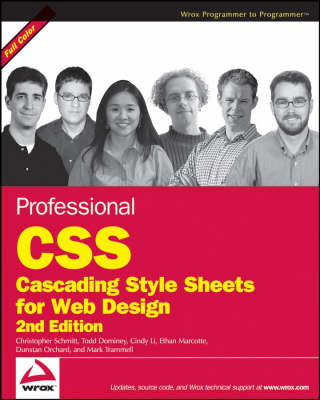 Professional CSS: Cascading Style Sheets for Web Design (Paperback)