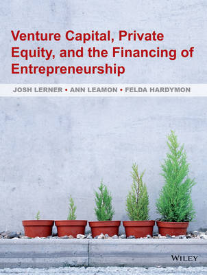 Venture Capital, Private Equity, and the Financing of Entrepreneurship (Hardback)