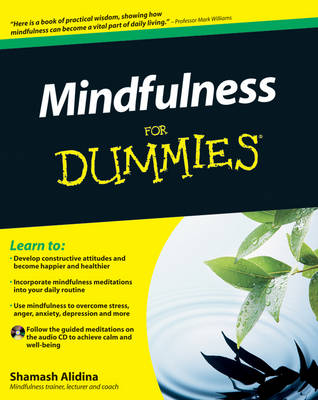 Mindfulness For Dummies (Paperback)