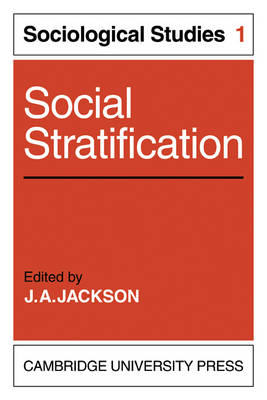 socialization and social stratification essay
