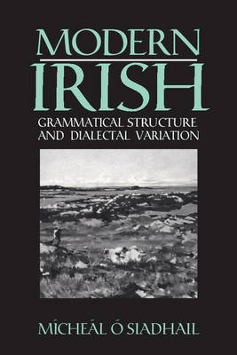 Modern Irish: Grammatical Structure and Dialectal Variation - Cambridge Studies in Linguistics (Paperback)