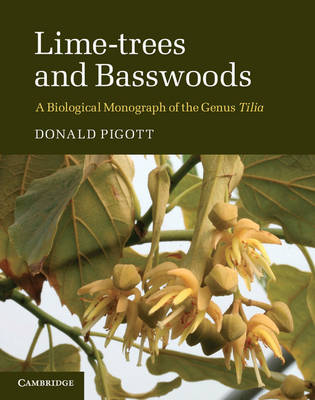 Lime Trees and Basswoods: A Biological Monograph of the Genus Tilia (Hardback)