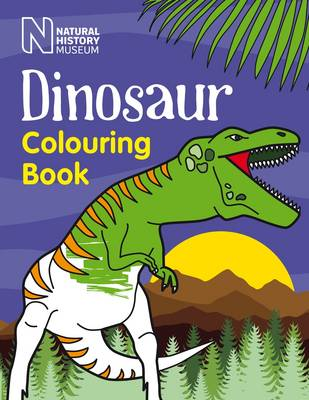 Dinosaur Colouring Book (Paperback)