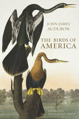 The Birds of America (Hardback)
