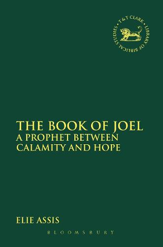 The Book of Joel: A Prophet Between Calamity and Hope - The Library of Hebrew Bible/Old Testament Studies (Paperback)