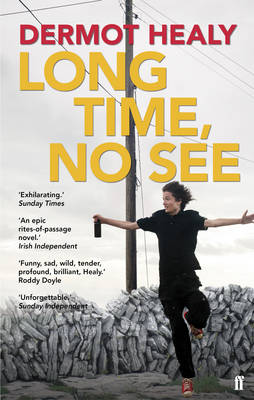 Long Time, No See (Paperback)