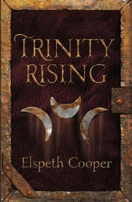 Trinity Rising - The Wild Hunt Book 2 (Paperback)