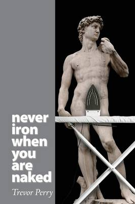 Never Iron When You Are Naked (Paperback)